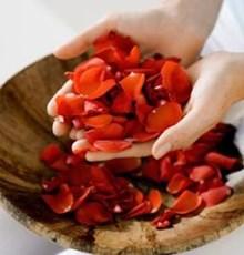 فواید مصرف چای سبز و گل سرخ