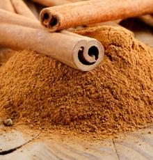 دارچین یا دالچینی یکی از بهترین گیاهان دارویی
