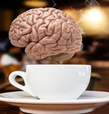 اگر حافظه ضعیفی دارید این دمنوش ها را بنوشید