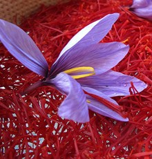 خواص و مهمترین خاصیت های درمانی زعفران