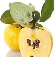 خواص به و آنچه باید در مورد مزایای میوه به بدانید