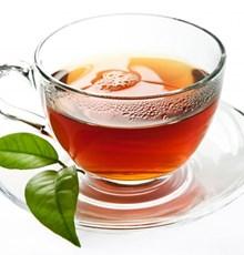 پلی فنول های چای از رشد و انتشار باکتری  Fusobacterium nucleatum جلوگیری می کند