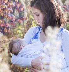 راهکارهای گیاهی برای افزایش شیر مادر