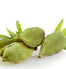ترکیبات مفید دانه های هل