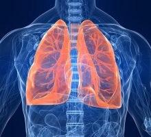 این 9 گیاه سبب بهبود آسیب های ریه و تقویت سلامت آن می شوند