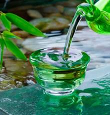 مکانیسم اثر پلی فنول های چای سبز و سیب بر جلوگیری از افزایش رشد تومورها و بیماری آترواسکلروزیس