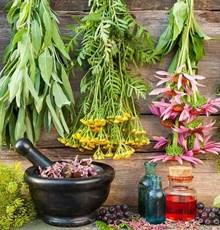 گیاهان دارویی و مکملهای مناسب برای افراد مبتلا به دیابت