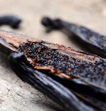 تاثیر مصرف خوراکی و استشمام عطر وانیل بر کاهش اشتها و کاهش وزن