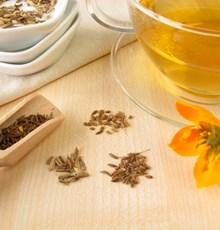 برخی از فواید سلامتبخش چای رازیانه