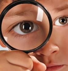 کاربرد عسل برای تقویت بینایی و درمان بیماریهای چشمی