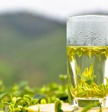 اثر کاتچینهای چای سبز بر ریزش مو: مطالعهای تجربی در نمونههای حیوانی با الگوی طاسی مشابه انسان