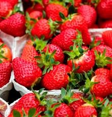 خواص توتفرنگی برای سلامتی
