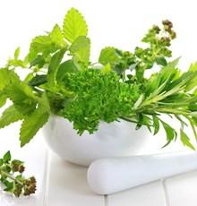 چند دستور گیاهی برای بهبود سوء هاضمه
