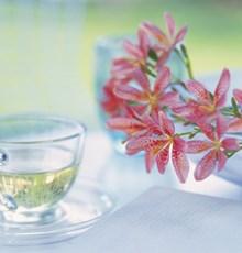 دمنوشهای گیاهی برای بهبود اسهال