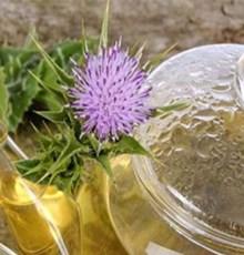 با این گیاهان دارویی از شر کبد چرب خلاص شوید