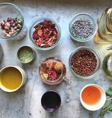 آیا میتوانید دمنوشهای گیاهی مختلف را در یک روز بنوشید؟