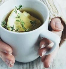 3 دمنوشی که سرماخوردهها بیشتر از هر چیزی نیاز دارند