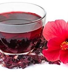 خواص چای ترش ؛ کاهش وزن و مبارزه با سرطان