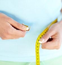 نحوه عملکرد بربرین موجود در زرشک بر کاهش وزن