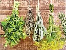 با بهترین آرامشدهندههای گیاهی آشنا شوید