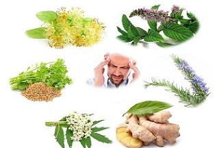 نسخههای گیاهی برای درمان میگرن