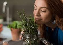 ۵ دمنوش گیاهی برای تقویت موها