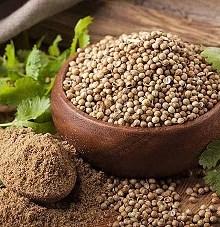 گشنیز منبعی از ترکیبات ارزشمند برای غذاهای کاربردی
