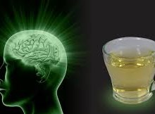 نوشیدن چای موجب بهبود سلامت مغز میشود