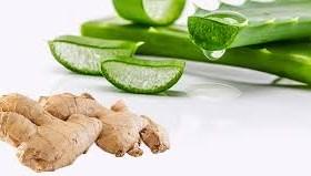 3 گیاه برای مقابله با درد آرتریت