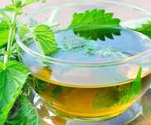 خواص جادویی گیاه گزنه؛ از درمان دیابت تا بهبود آرتروز