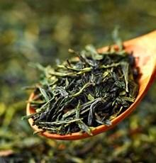 اثر ویتامین C و شیرینکننده زایلیتول بر میزان جذب رودهای کاتچینهای چای سبز